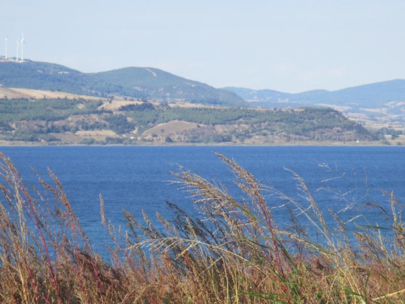Çanakkale Lapseki Suluca da Satılık 16 5 Dönüm Yatırımlık Arazi