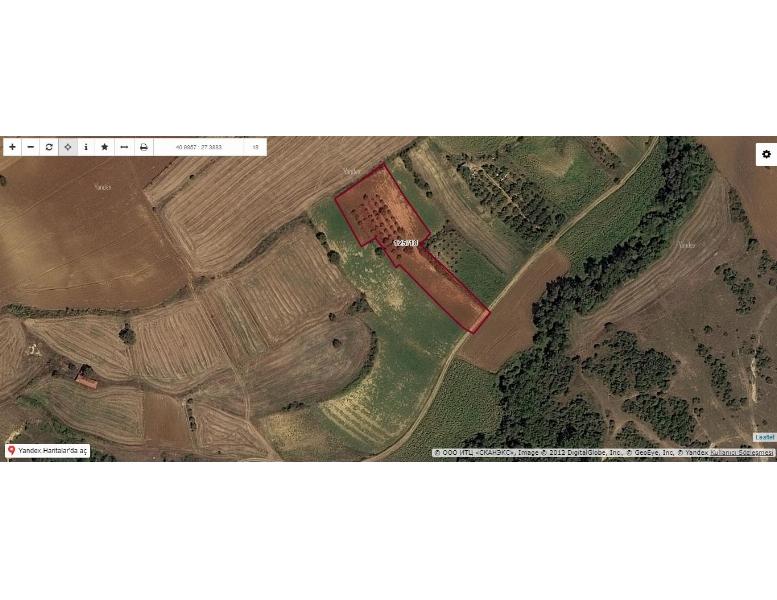 Tekirdağ Seymenli Mah Satılık Tarla 5.004.40M2 İçinde Yaklaşık 45 Ağaç Meyve,ceviz Ve Fındık Ağaçları Mevcut Hobi Bahçesi Olabilecek Yatırımlık Arazi