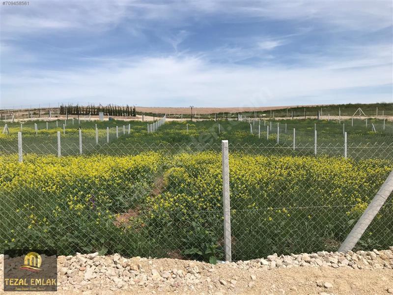 TEZALdan 431 m2 Tel Örgü Çevrili Yol Cepheli Hobi Bahçesi