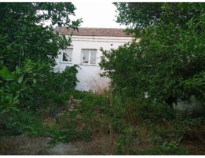 Aydın Germencik Moralıda 443 M2 Arsa İçinde Köşebaşı Satılık Köy Evi