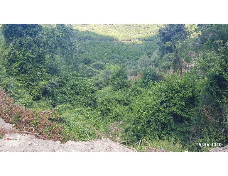 85.000 TL Erdek Hamamlı'da Satılık 1.310 m2 Bahçe